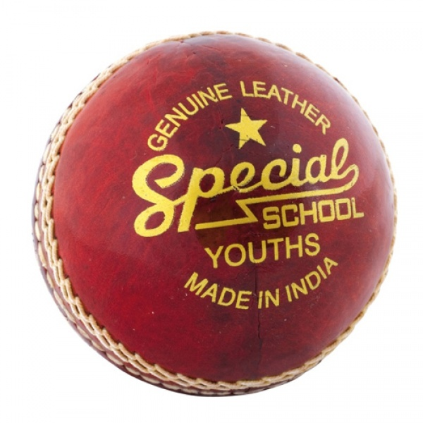 Special School Youth Cricket Ball